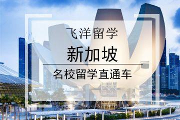 漯河新加坡留学机构-漯河申请新加坡留学课程