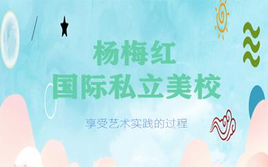 东莞国贸城杨梅红国际私立美校