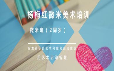 常州武进万达杨梅红2周岁微米美术班
