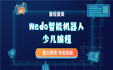 广州东风东童程童美Wedo机器人编程