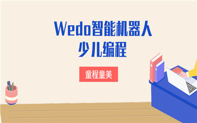 深圳龙岗童程童美Wedo机器人编程