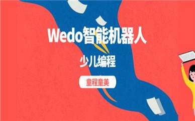 南京浦口明发童程童美Wedo机器人编程