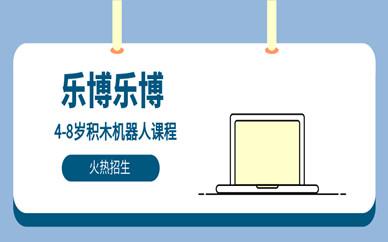 南京鼓楼中山北路乐博4-8岁儿童积木机器人编程