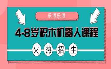 武汉江岸花桥街积木机器人少儿编程班
