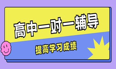 扬州邗江秦学高中一对一课程