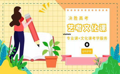 扬州邗江艺考文化课补习