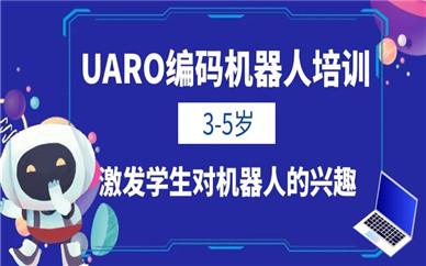 南宁乐博3-5岁编码机器人课程