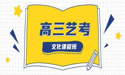 重庆沙坪坝区高三艺考文化课