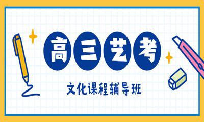 重庆南岸区高三艺考文化课程辅导