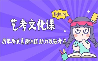 北京丰台金博艺考文化课补习班