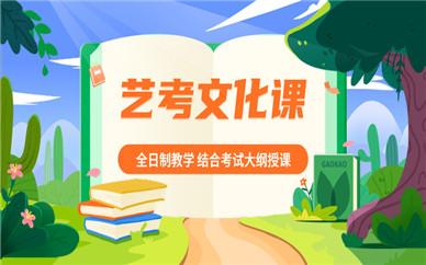 北京大兴金博艺考文化课集训