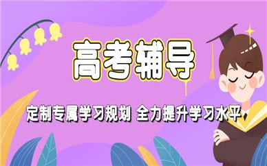 杭州上城纳思书院高考提升辅导