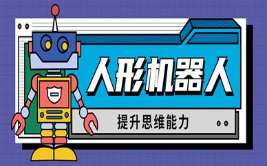 北京东城青少年人形机器人编程课