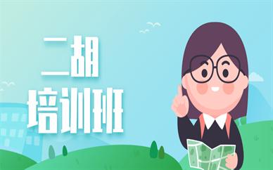 佛山禅城二胡培训学习班